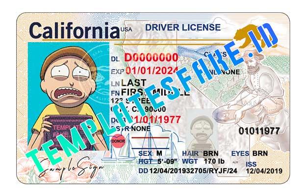 California DL USA PSD Template