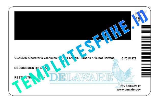 Delaware DL USA PSD Template