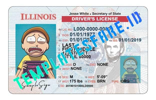 Illinois DL USA PSD Template