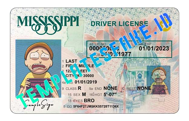 Mississippi DL USA PSD Template